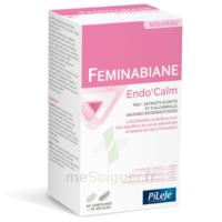 Pileje Feminabiane Endo'calm Comprimés + Gélules B/60+30 à Le Teich