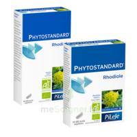 Pileje Phytostandard - Rhodiole 20 Gélules Végétales à Le Teich