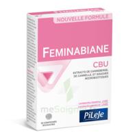 Pileje Feminabiane Cbu 30 Comprimés Bicouches à Le Teich