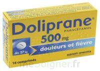 Doliprane 500 Mg Comprimés 2plq/8 (16) à Le Teich