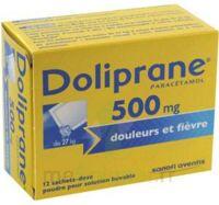 Doliprane 500 Mg Poudre Pour Solution Buvable En Sachet-dose B/12 à Le Teich