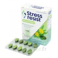 Stress Resist Comprimés Stress & Fatigue B/30 à Le Teich