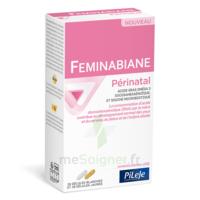 Pileje Feminabiane Périnatal 28 Gélules Blanches Et 28 Gélules Jaunes à Le Teich