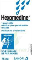 Hexomedine 1 Pour Mille, Solution Pour Pulvérisation Cutanée En Flacon Pressurisé à Le Teich
