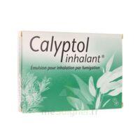 Calyptol Inhalant, émulsion Pour Inhalation Par Fumigation à Le Teich