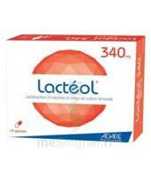 Lacteol 340 Mg, 10 Gélules à Le Teich