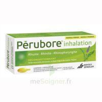 Perubore Caps Inhalation Par Vapeur Inhalation Plq/15 à Le Teich