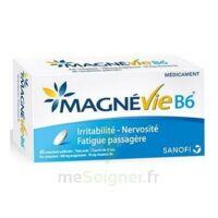Magnevie B6 100 Mg/10 Mg Comprimés Pelliculés Plaq/60 à Le Teich