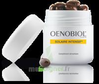 Oenobiol Solaire Intensif Caps Peau Normale Pot/30 à Le Teich