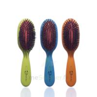 Cartel Brosse Cheveux Pneumatique Sanglier Médium à Le Teich