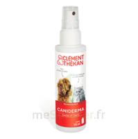 Clément Thékan Caniderma Solution Externe Cicatrisant Spray/125ml à Le Teich