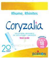 Boiron Coryzalia Solution Buvable Unidose B/20 à Le Teich