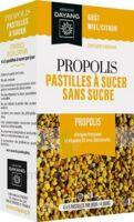 Dayang Propolis Pastilles 20 Pastilles à Le Teich
