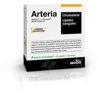 Aminoscience Santé Arteria Gélules 2b/56 à Le Teich
