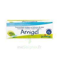 Boiron Arnigel Gel T(alumino-plastique)/45g à Le Teich