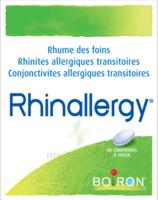 Boiron Rhinallergy Comprimés B/40 à Le Teich