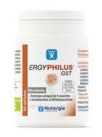 Nutergia Ergyphilus Gst Gélules B/60 à Le Teich