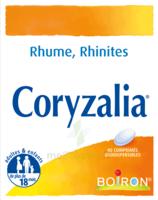 Boiron Coryzalia Comprimés Orodispersibles à Le Teich